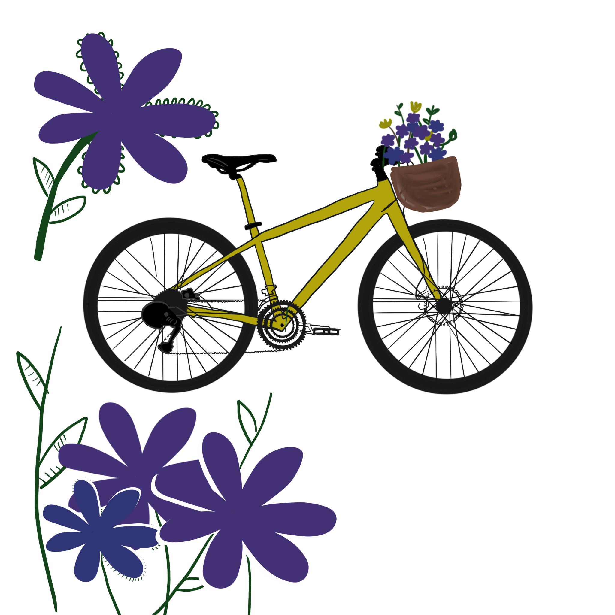 5920_Bike